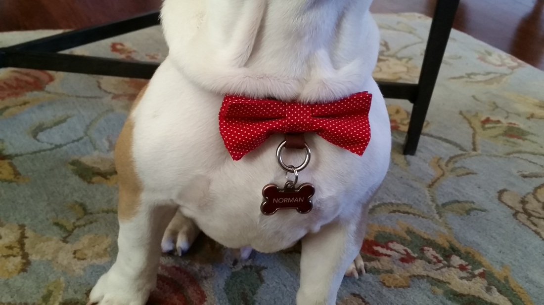 Custom dog bow tie